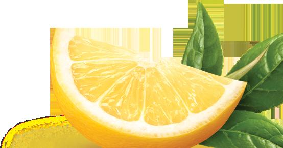 Il Limone e le sue stagioni